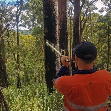 Scanning for data connectivity in remote bushland