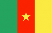 Cameroon national flag